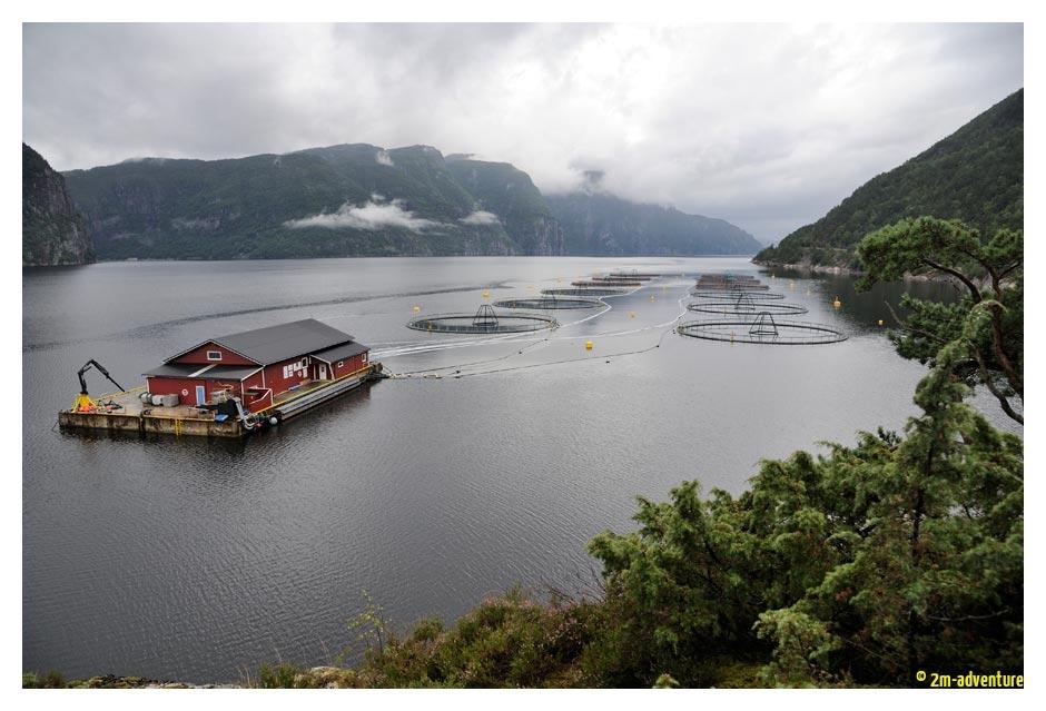 Norwegen16_W_504